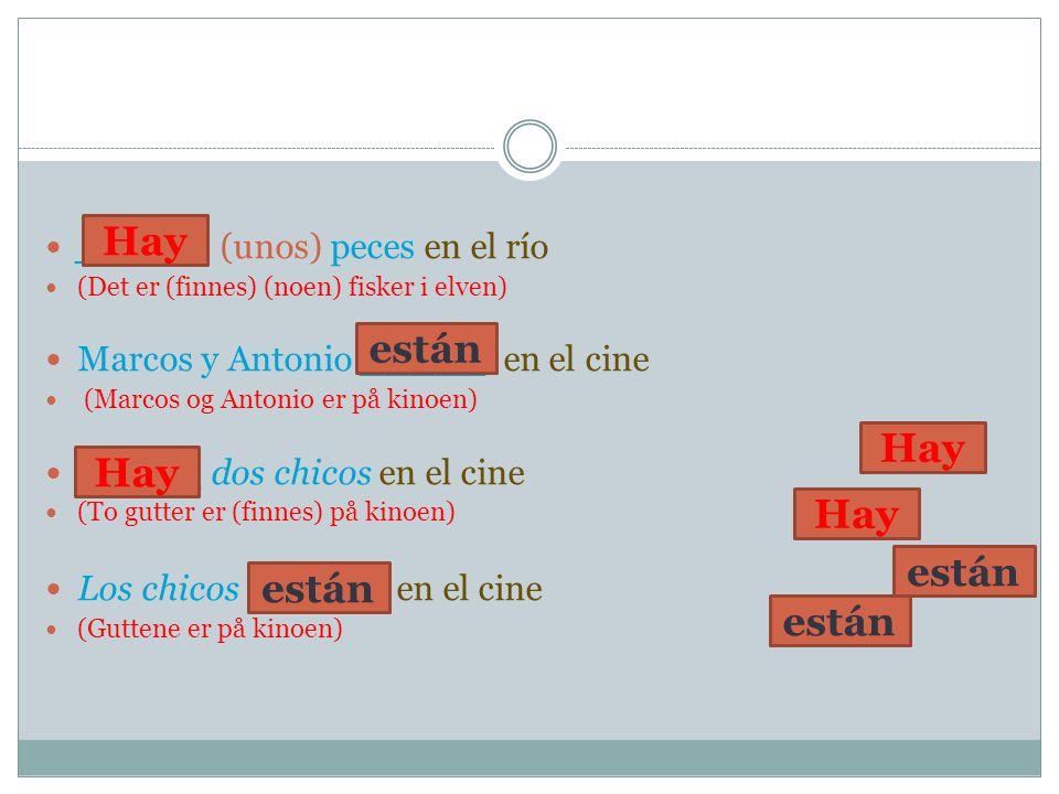 _____ (unos) peces en el río (Det er (finnes) (noen) fisker i elven) Marcos y Antonio _____ en el cine (Marcos og Antonio er på kinoen) _____ dos chic