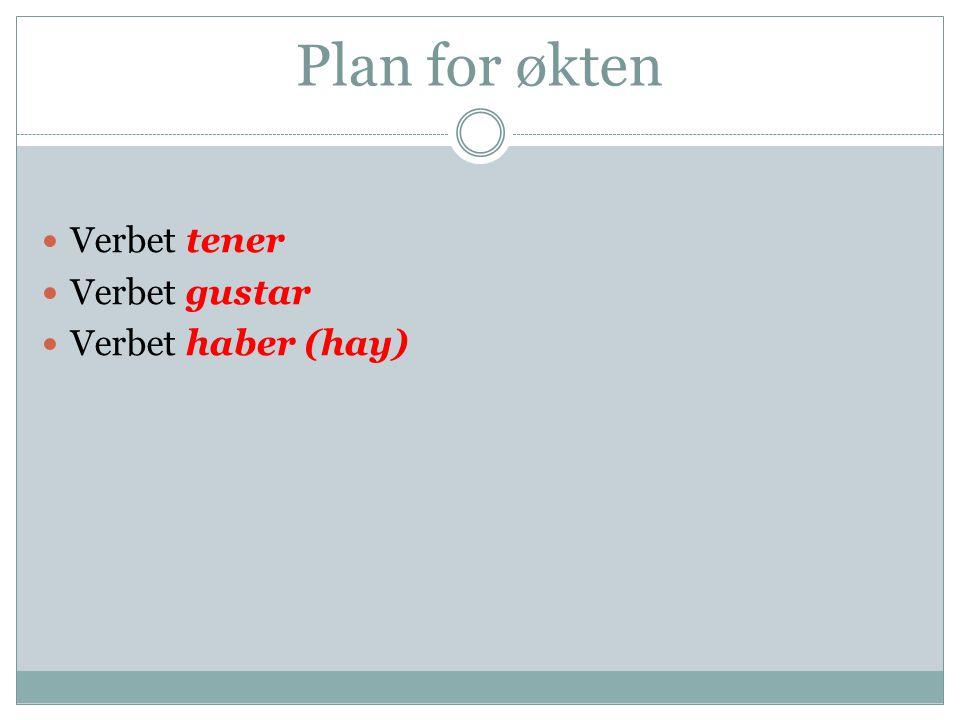 Plan for økten Verbet tener Verbet gustar Verbet haber (hay)