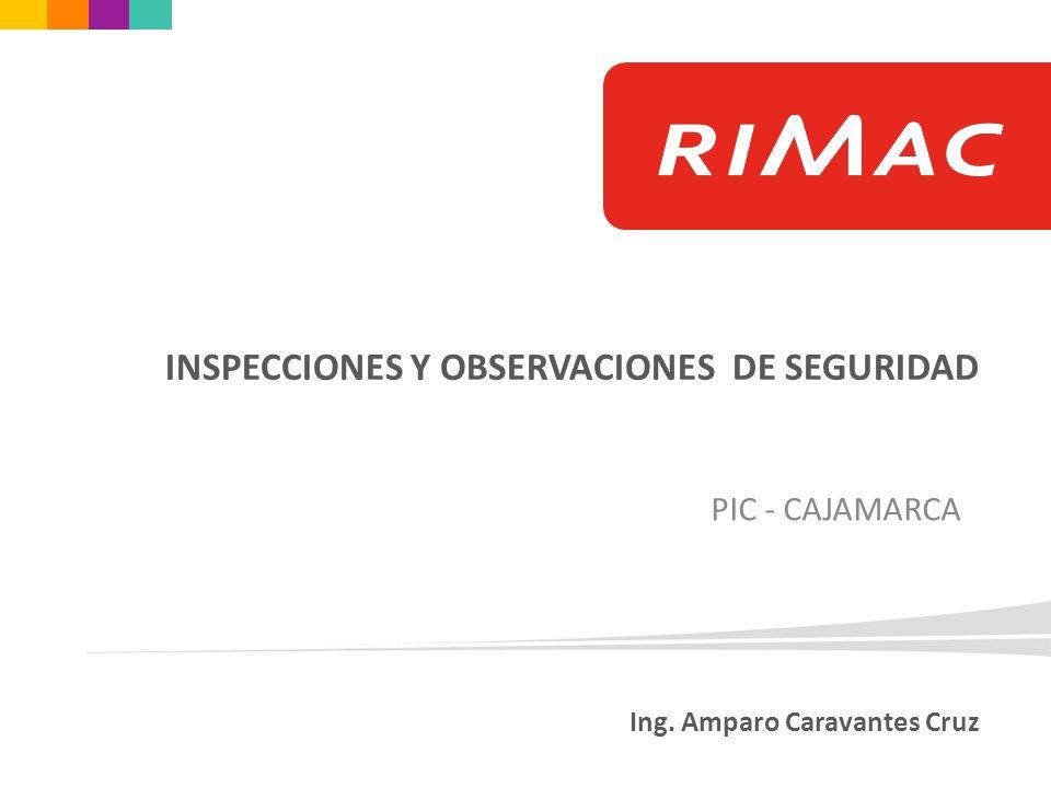 Ing. Amparo Caravantes Cruz PIC - CAJAMARCA INSPECCIONES Y OBSERVACIONES DE SEGURIDAD