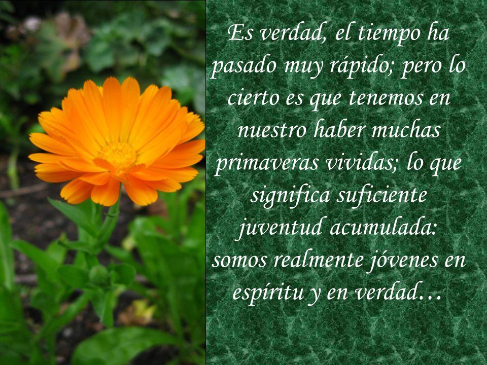 Con la belleza de estas flores fotografiadas especialmente para este momento, queremos expresar a todas y cada una el cariño y aprecio que les tenemos