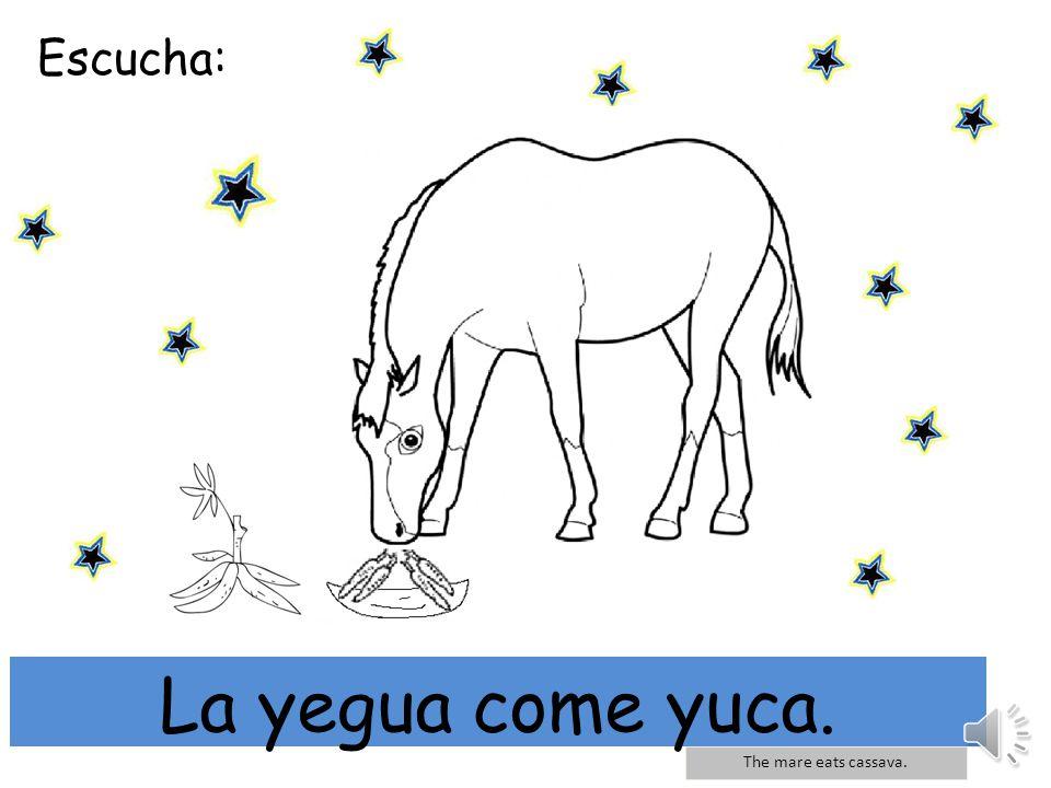 Escucha: mi Yo tengo un yoyo y un yak. I have a yoyo and a yak. Yo tengo un yoyo y un yak.