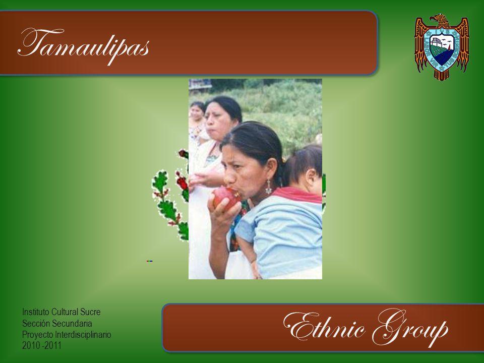 Instituto Cultural Sucre Sección Secundaria Proyecto Interdisciplinario 2010 -2011 Tamaulipas Ethnic Group