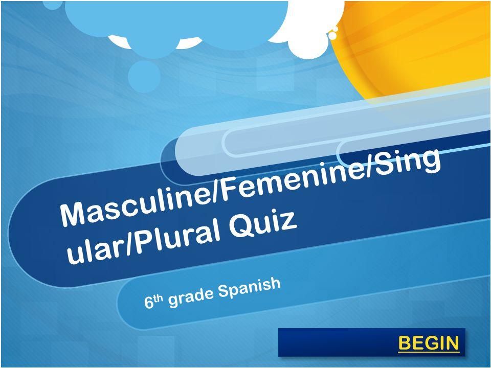 Masculine/Femenine/Sing ular/Plural Quiz 6 th grade Spanish BEGIN