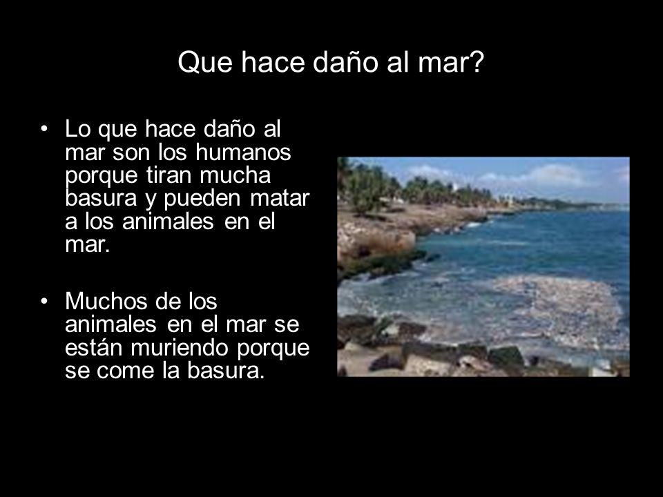 Como proteger el mar Por: Nicolás