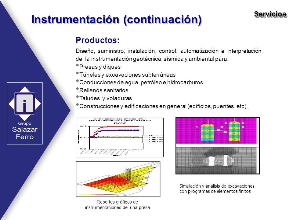 Instrumentación (continuación) ServiciosServicios Productos: Diseño, suministro, instalación, control, automatización e interpretación de la instrumen