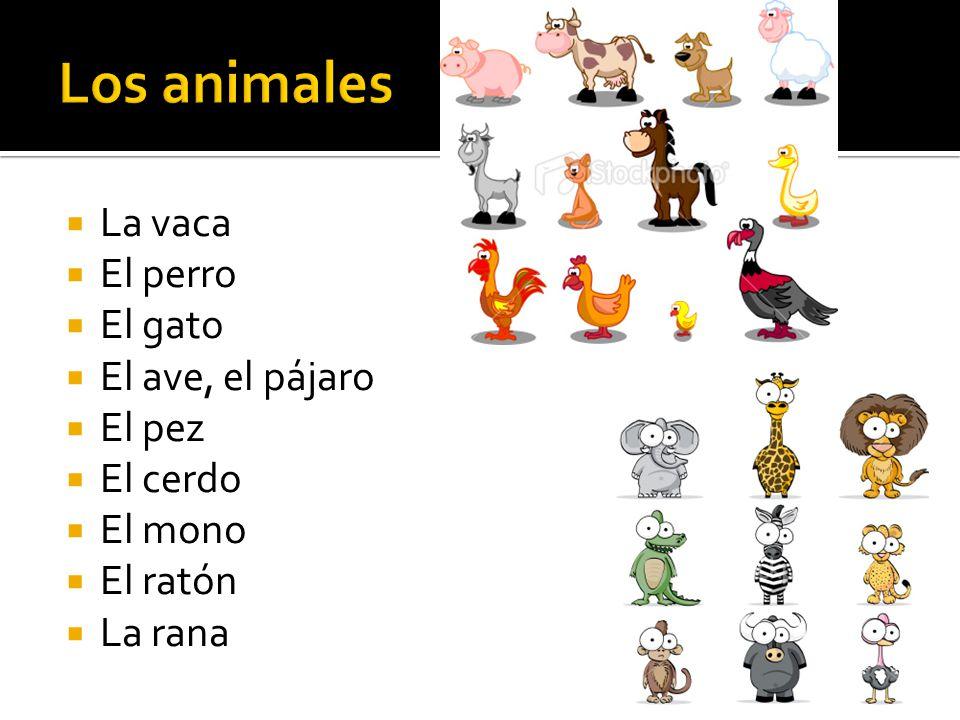 La vaca El perro El gato El ave, el pájaro El pez El cerdo El mono El ratón La rana
