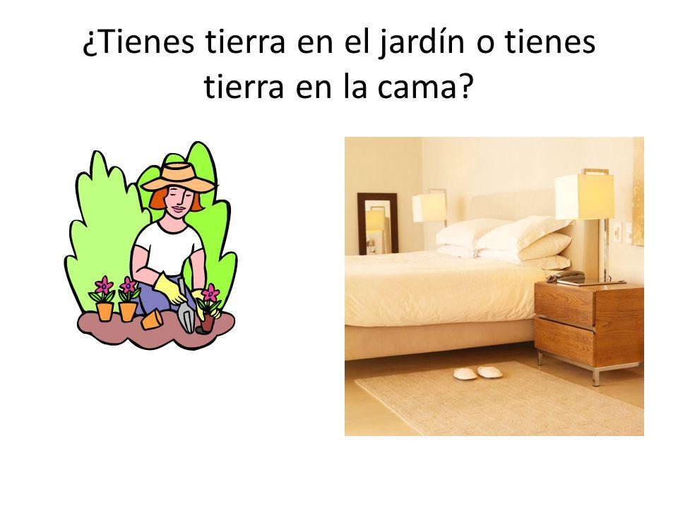 ¿Tienes tierra en el jardín o tienes tierra en la cama?