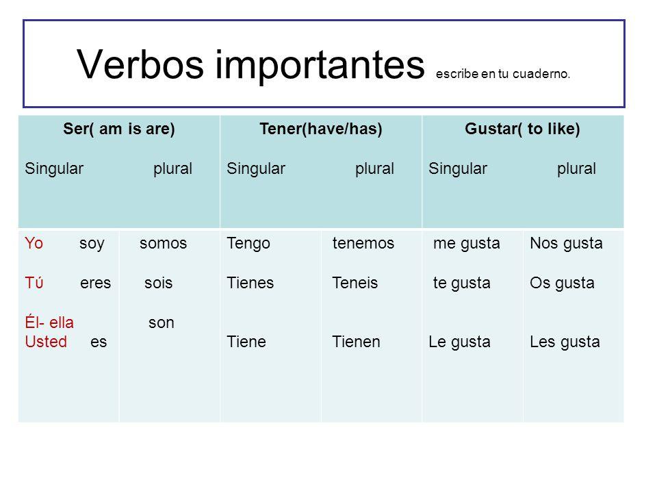 Verbos importantes escribe en tu cuaderno. Ser( am is are) Singular plural Tener(have/has) Singular plural Gustar( to like) Singular plural Yo soy Tύ