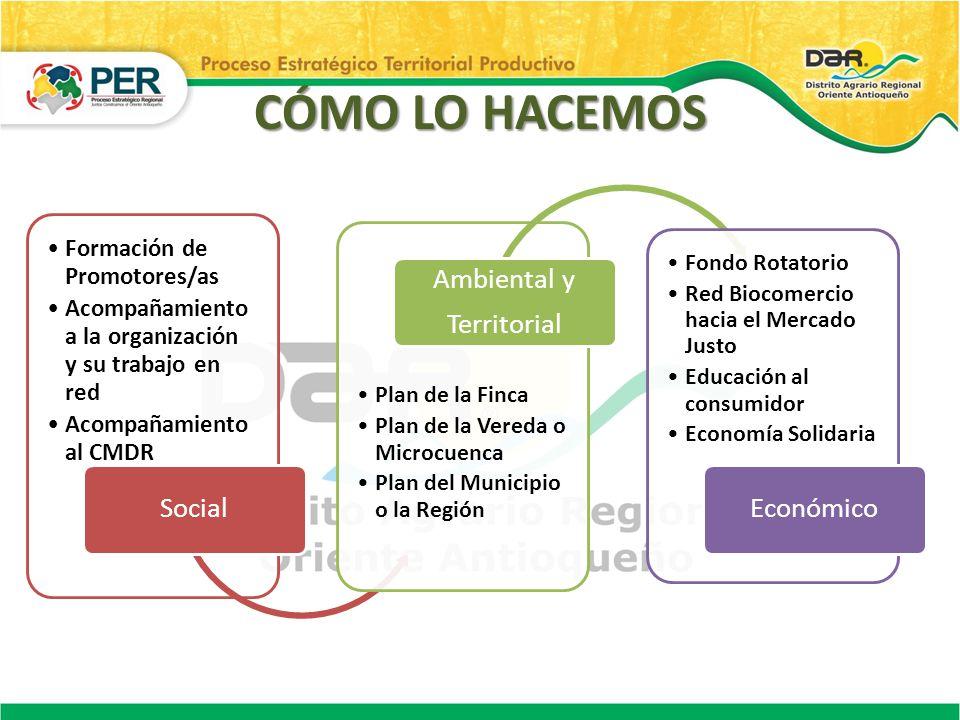 Formación de Promotores/as Acompañamiento a la organización y su trabajo en red Acompañamiento al CMDR Social Plan de la Finca Plan de la Vereda o Mic
