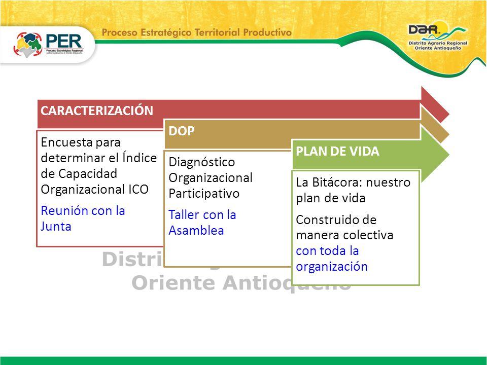 CARACTERIZACIÓN Encuesta para determinar el Índice de Capacidad Organizacional ICO Reunión con la Junta DOP Diagnóstico Organizacional Participativo T