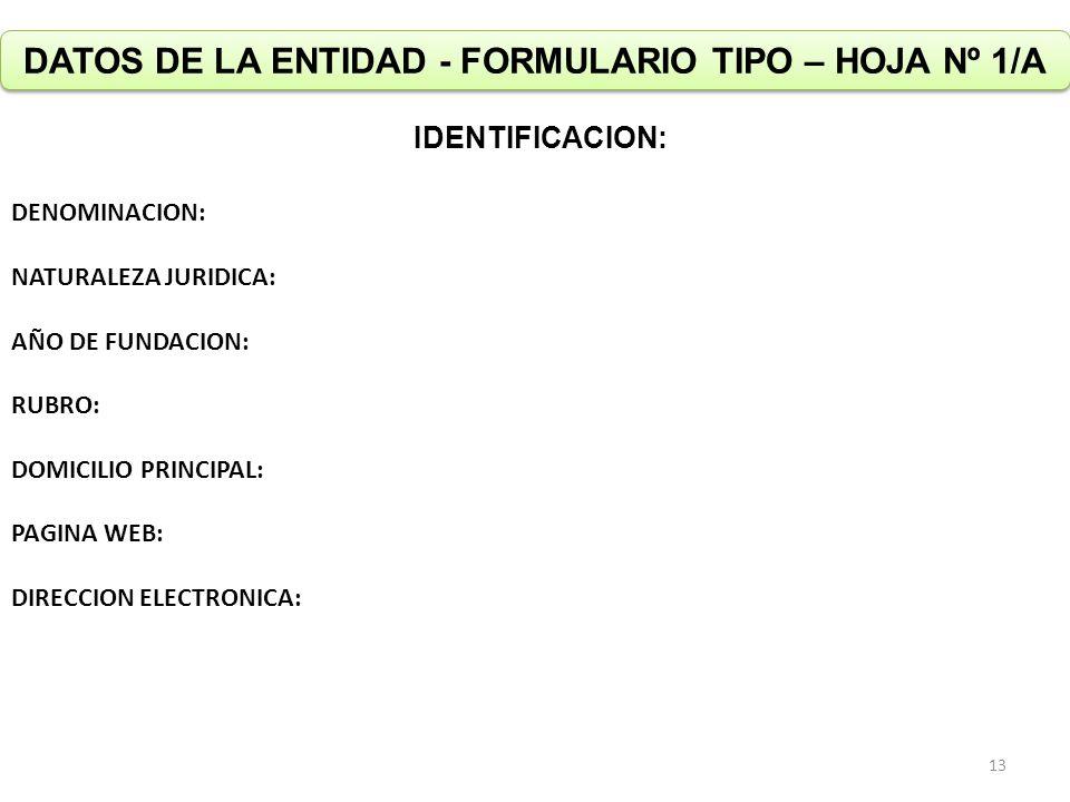 DATOS DE LA ENTIDAD - FORMULARIO TIPO – HOJA Nº 1/A IDENTIFICACION: DENOMINACION: NATURALEZA JURIDICA: AÑO DE FUNDACION: RUBRO: DOMICILIO PRINCIPAL: PAGINA WEB: DIRECCION ELECTRONICA: 13