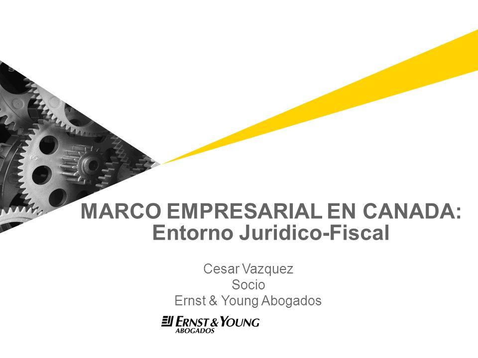 MARCO EMPRESARIAL EN CANADA: Entorno Juridico-Fiscal Cesar Vazquez Socio Ernst & Young Abogados