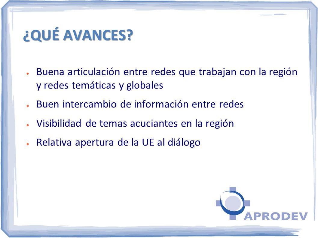 ¿QUÉ AVANCES? Buena articulación entre redes que trabajan con la región y redes temáticas y globales Buen intercambio de información entre redes Visib