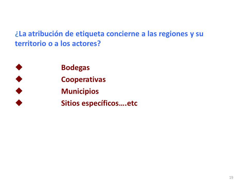 ¿La atribución de etiqueta concierne a las regiones y su territorio o a los actores? Bodegas Cooperativas Municipios Sitios específicos….etc 19