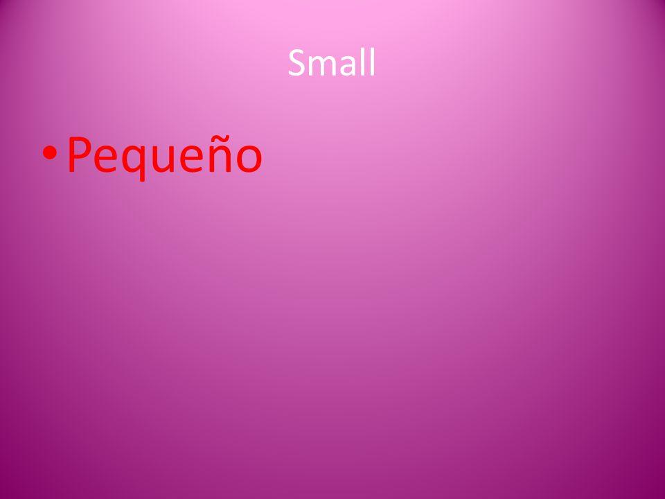 Small Pequeño