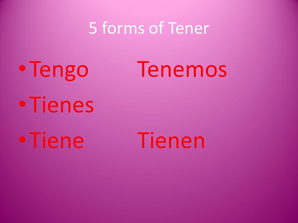 5 forms of Tener TengoTenemos Tienes TieneTienen