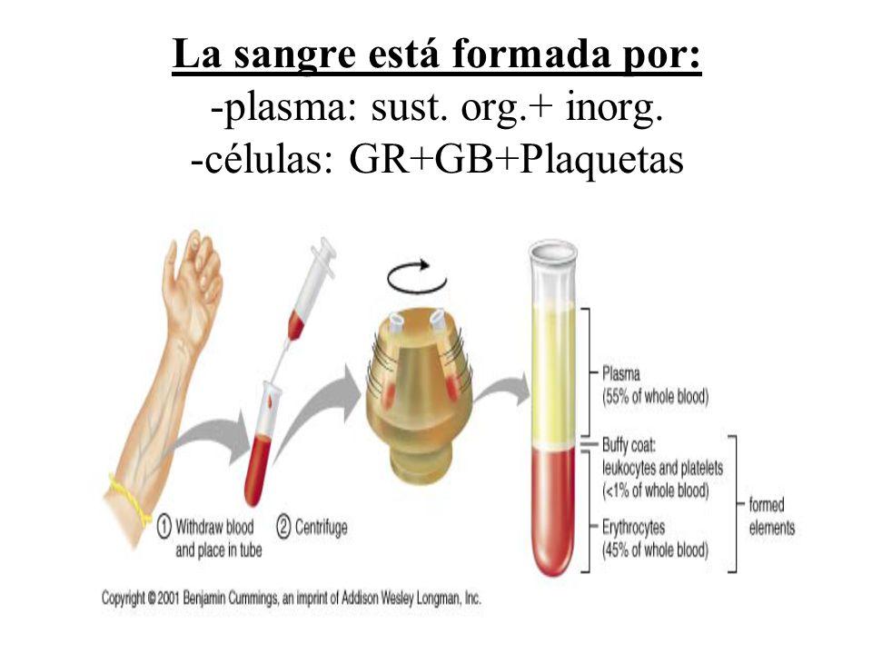 La sangre está formada por: -plasma: sust. org.+ inorg. -células: GR+GB+Plaquetas