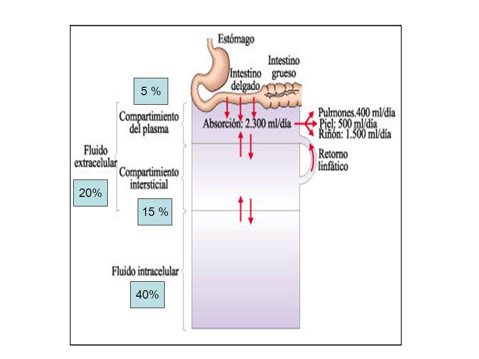 Presión oncótica ¶ oncótica = ¶ osmótica + ¶ inhibición