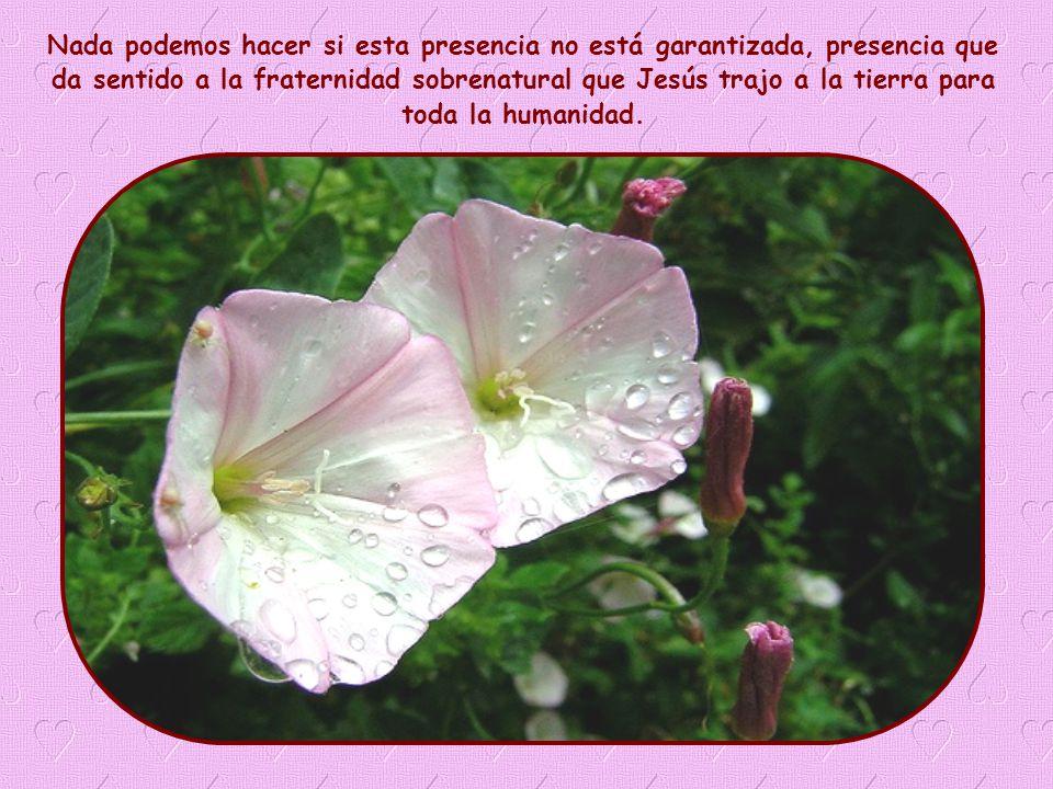 Esta Palabra de vida es un llamado apremiante, especialmente para los cristianos, a dar testimonio, con el amor, de la presencia de Dios.