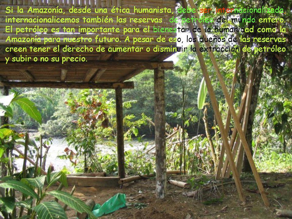 Si la Amazonía, desde una ética humanista, debe ser internacionalizada, internacionalicemos también las reservas de petróleo del mundo entero.