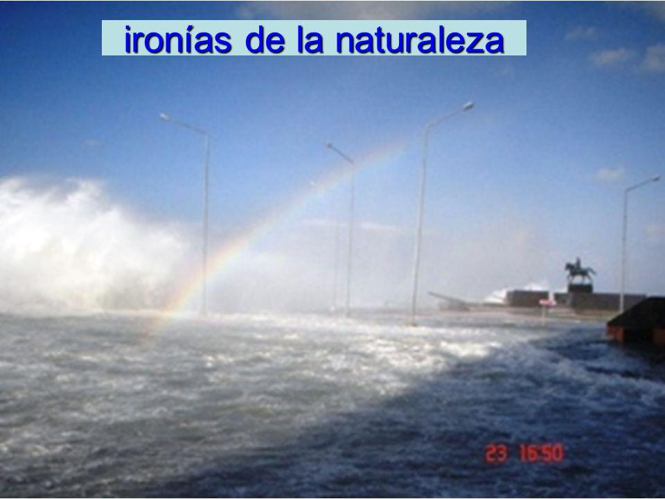 ironías de la naturaleza