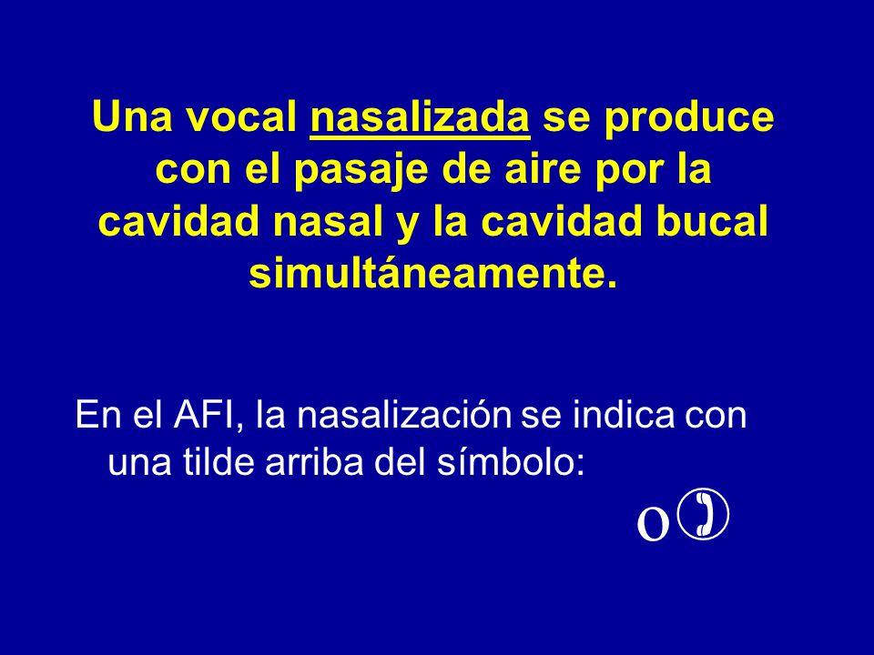 Una vocal nasalizada se produce con el pasaje de aire por la cavidad nasal y la cavidad bucal simultáneamente.