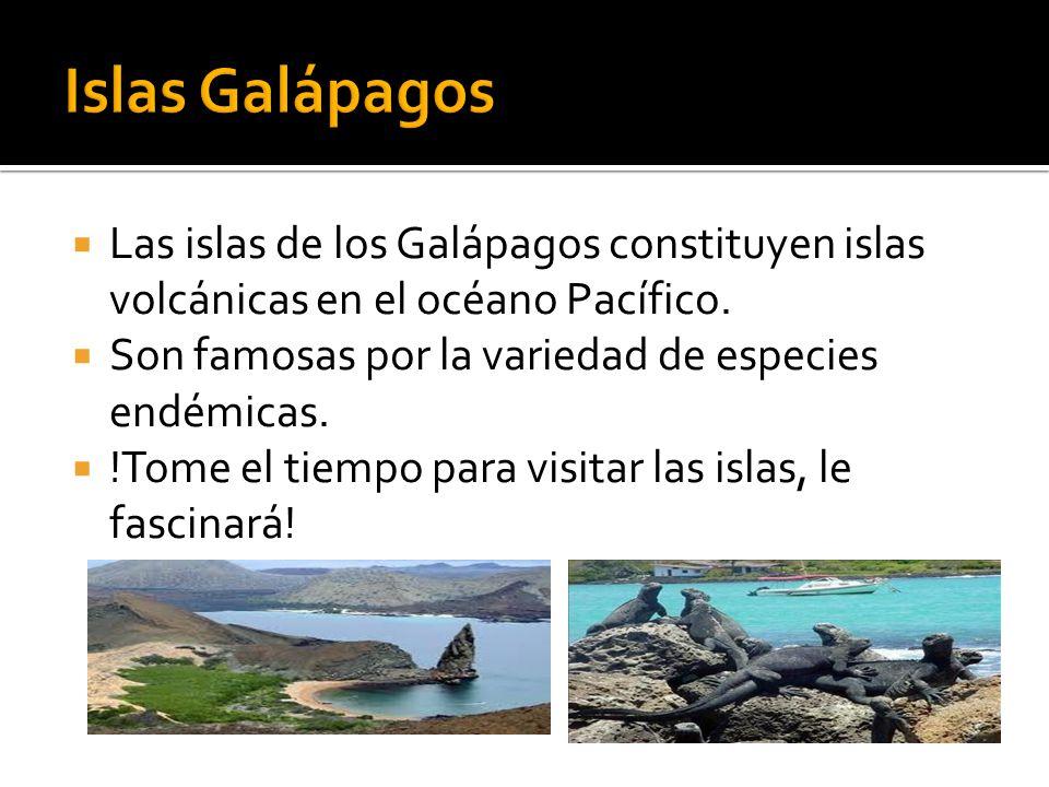 Las islas de los Galápagos constituyen islas volcánicas en el océano Pacífico. Son famosas por la variedad de especies endémicas. !Tome el tiempo para