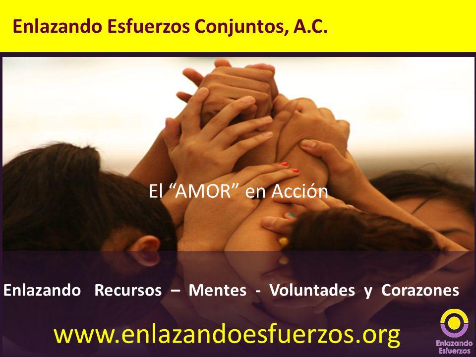 Enlazando Esfuerzos Conjuntos, A.C. Enlazando Recursos – Mentes - Voluntades y Corazones El AMOR en Acción www.enlazandoesfuerzos.org