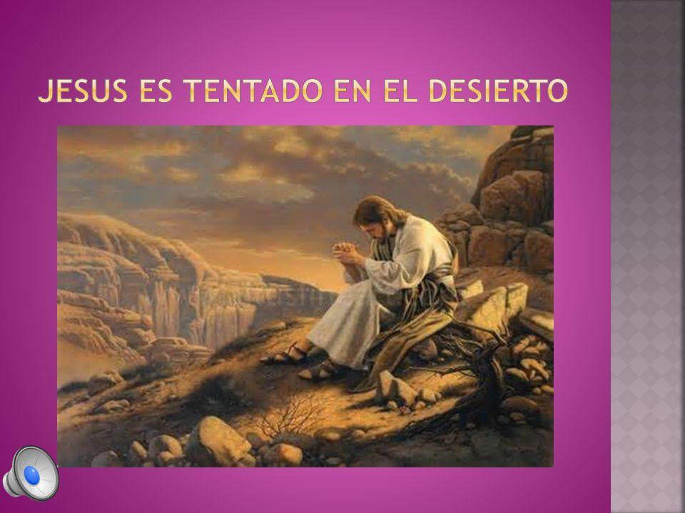 07 Jesús replicó: Dice también la Escritura: No tentarás al Señor tu Dios. 08 A continuación lo llevó el diablo a un monte muy alto y le mostró todas