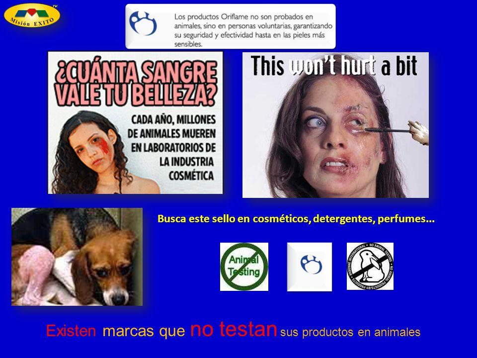 Existen marcas que no testan sus productos en animales Busca este sello en cosméticos, detergentes, perfumes...
