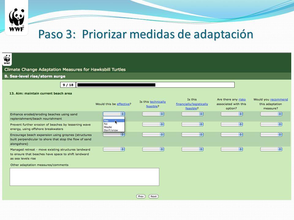 Paso 3: Priorizar medidas de adaptación