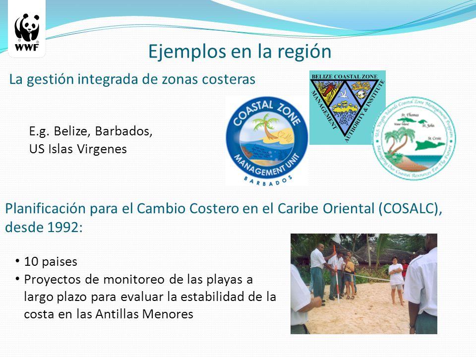 Ejemplos en la región Planificación para el Cambio Costero en el Caribe Oriental (COSALC), desde 1992: La gestión integrada de zonas costeras 10 paises Proyectos de monitoreo de las playas a largo plazo para evaluar la estabilidad de la costa en las Antillas Menores E.g.