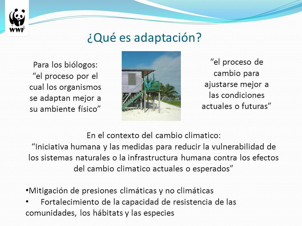 ¿Qué es adaptación.