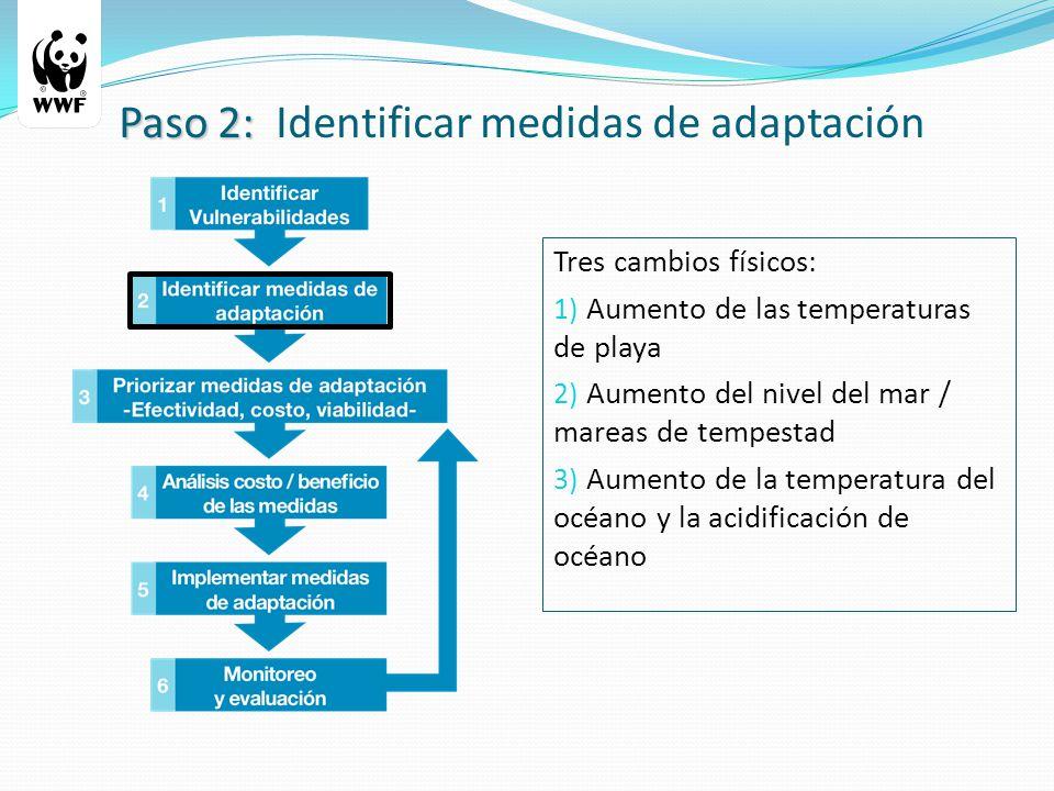 Tres cambios físicos: 1) Aumento de las temperaturas de playa 2) Aumento del nivel del mar / mareas de tempestad 3) Aumento de la temperatura del océano y la acidificación de océano Paso 2: Paso 2: Identificar medidas de adaptación