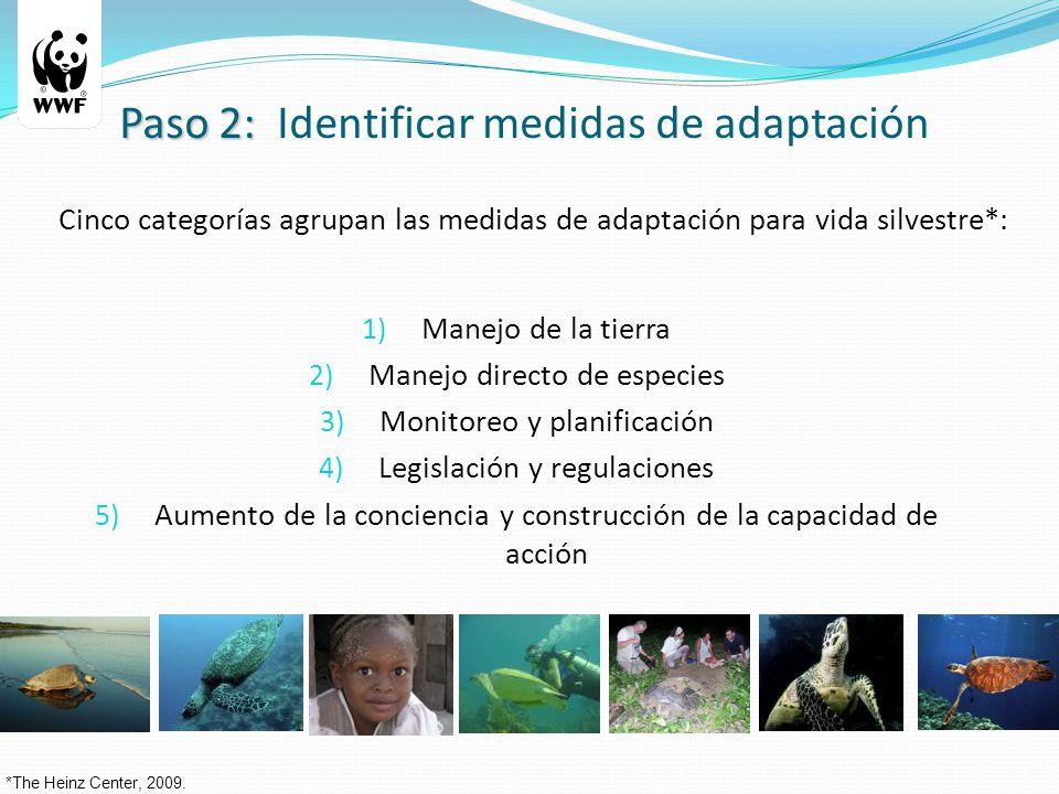1) Manejo de la tierra 2) Manejo directo de especies 3) Monitoreo y planificación 4) Legislación y regulaciones 5) Aumento de la conciencia y construcción de la capacidad de acción *The Heinz Center, 2009.