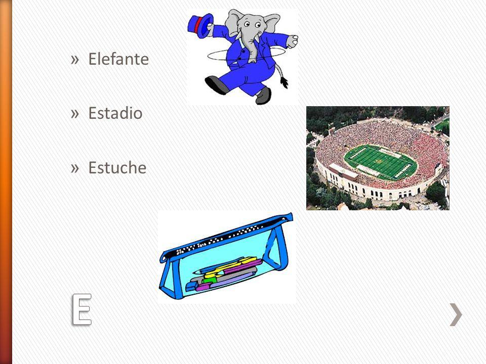 » Elefante » Estadio » Estuche
