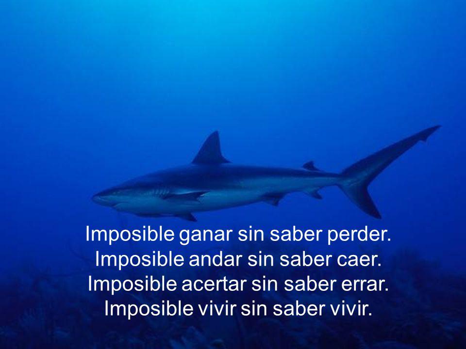 Imposible ganar sin saber perder.Imposible andar sin saber caer.
