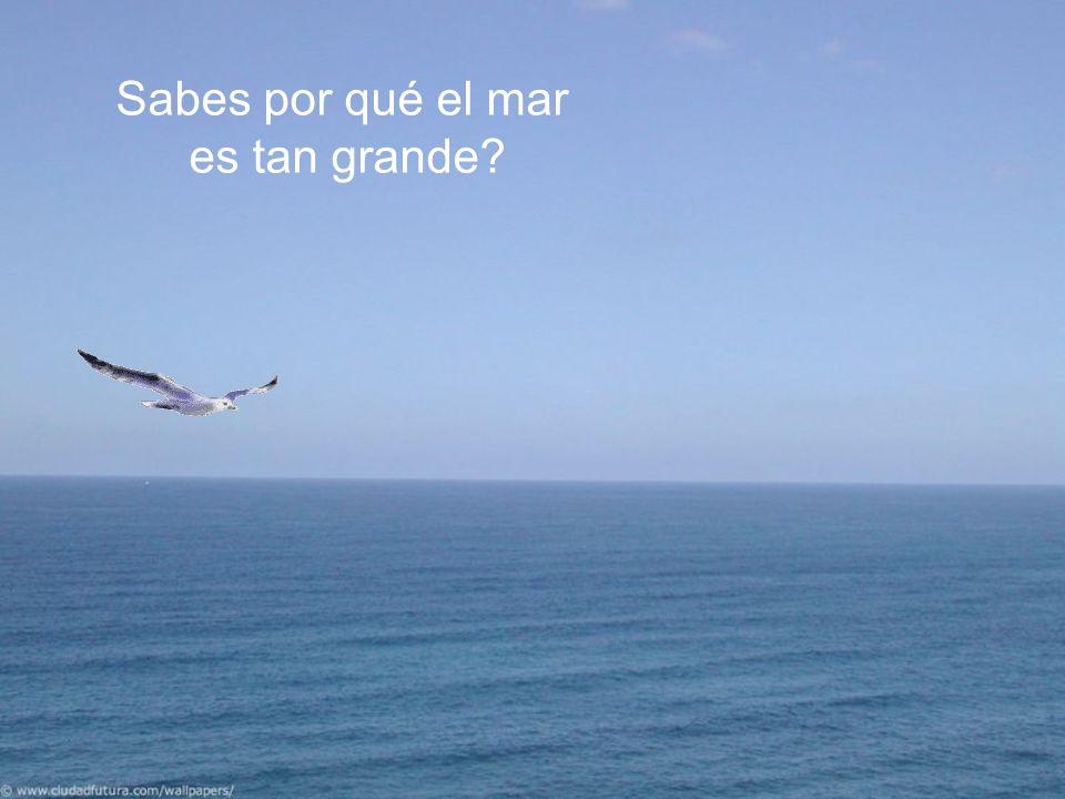Sabes por qué el mar es tan grande?