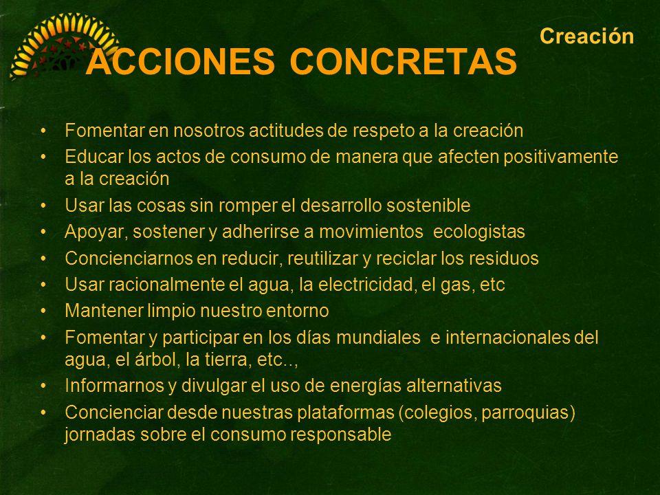 ACCIONES CONCRETAS Fomentar en nosotros actitudes de respeto a la creación Educar los actos de consumo de manera que afecten positivamente a la creaci