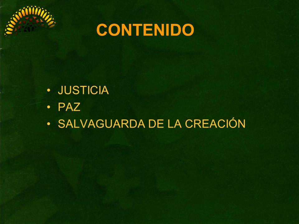 Definición En el mundo actual Claves franciscanas Acciones concretas JUSTICIA, PAZ Y SALVAGUARDA DE LA CREACIÓN