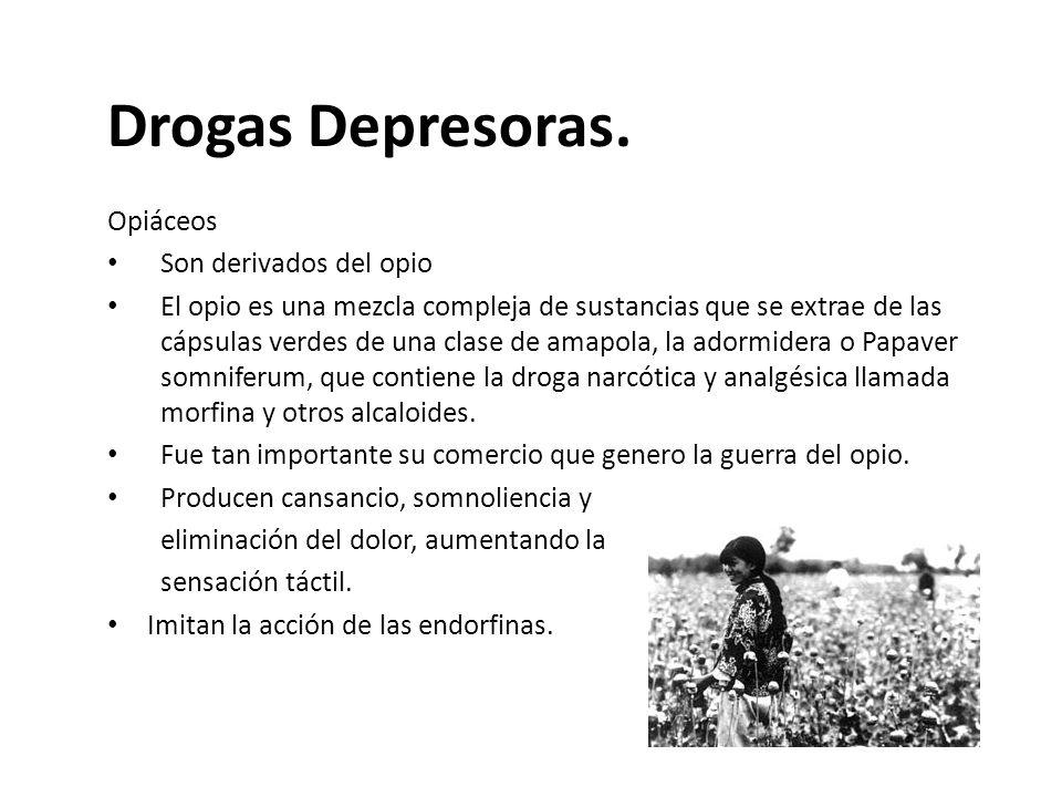 Drogas Depresoras. Opiáceos Son derivados del opio El opio es una mezcla compleja de sustancias que se extrae de las cápsulas verdes de una clase de a