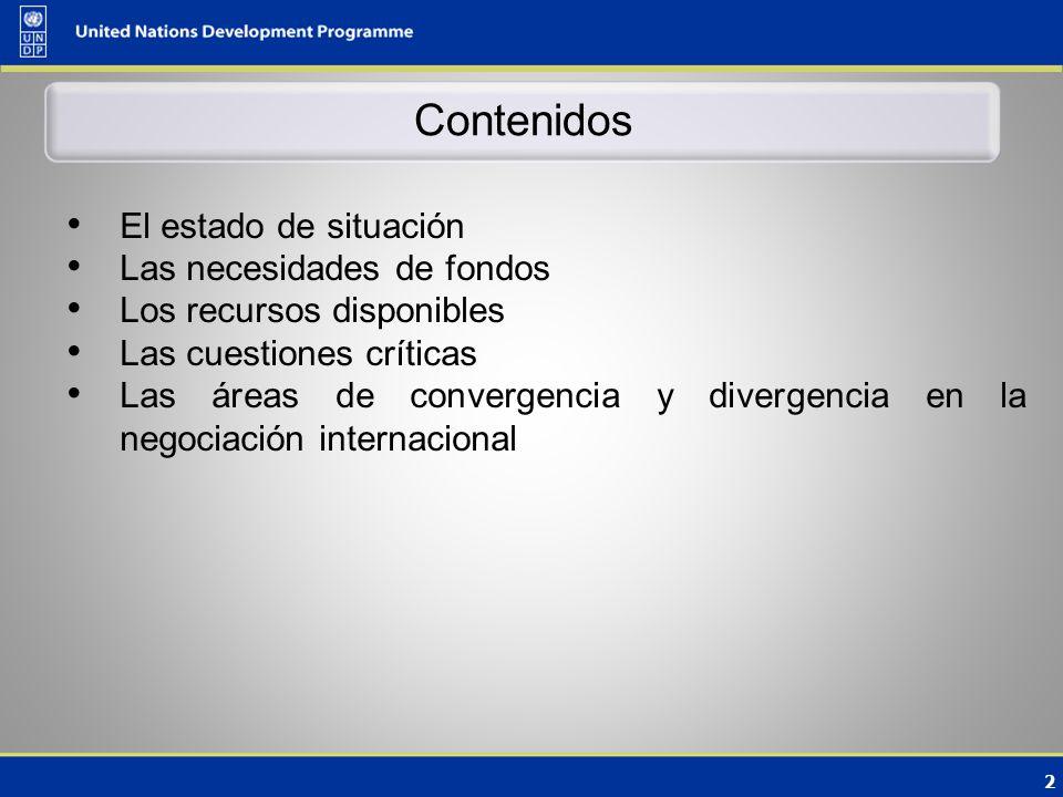 2 Contenidos El estado de situación Las necesidades de fondos Los recursos disponibles Las cuestiones críticas Las áreas de convergencia y divergencia en la negociación internacional