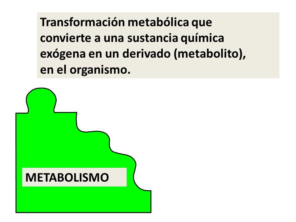 METABOLISMO Transformación metabólica que convierte a una sustancia química exógena en un derivado (metabolito), en el organismo.