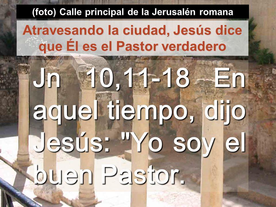 Jn 10,11-18 En aquel tiempo, dijo Jesús: Yo soy el buen Pastor.