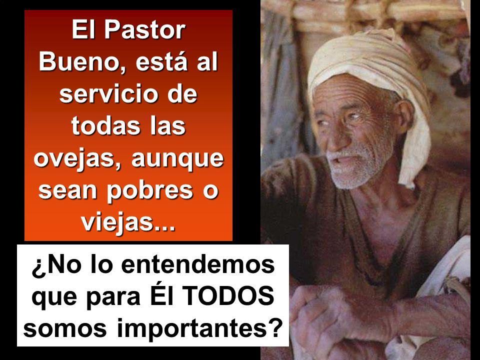 El Pastor Bueno, está al servicio de todas las ovejas, aunque sean pobres o viejas...