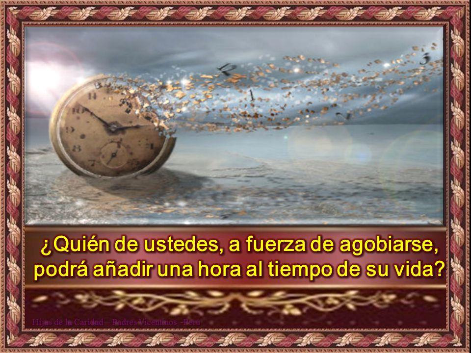 Miren las aves del cielo: ni siembran, ni cosechan, ni almacenan y, sin embargo, el Padre celestial las alimenta. ¿No valen ustedes más que ellas?