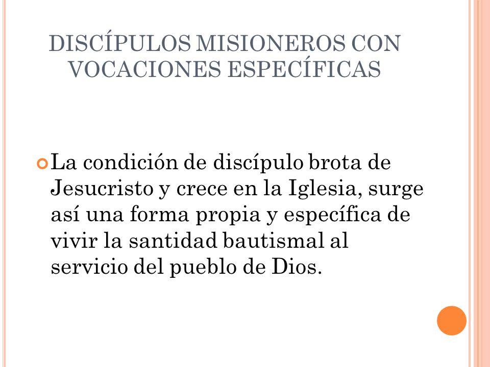 DISCÍPULOS MISIONEROS CON VOCACIONES ESPECÍFICAS La condición de discípulo brota de Jesucristo y crece en la Iglesia, surge así una forma propia y esp