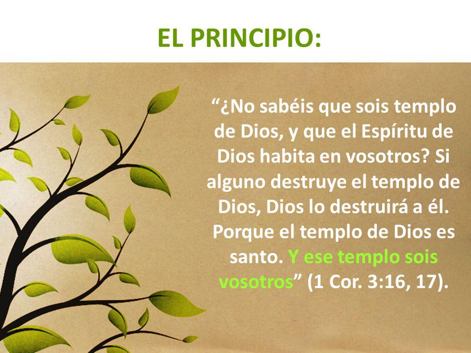 EL PRINCIPIO: ¿No sabéis que sois templo de Dios, y que el Espíritu de Dios habita en vosotros? Si alguno destruye el templo de Dios, Dios lo destruir