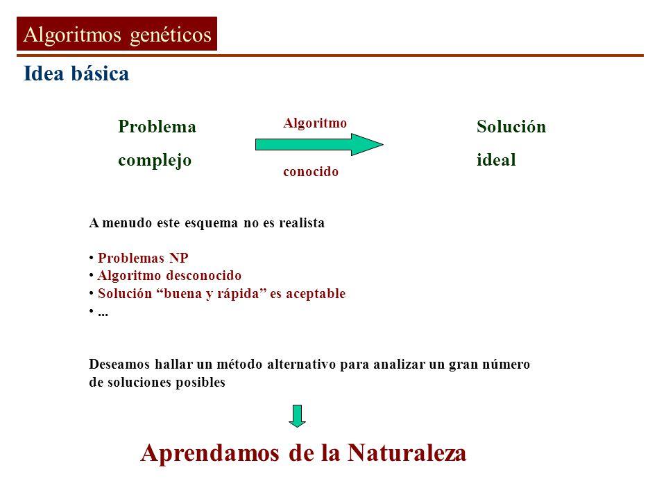 L L-1.... l l-1....... 2 BACK-PROPAGATION Regla de la cadena Redes Neuronales