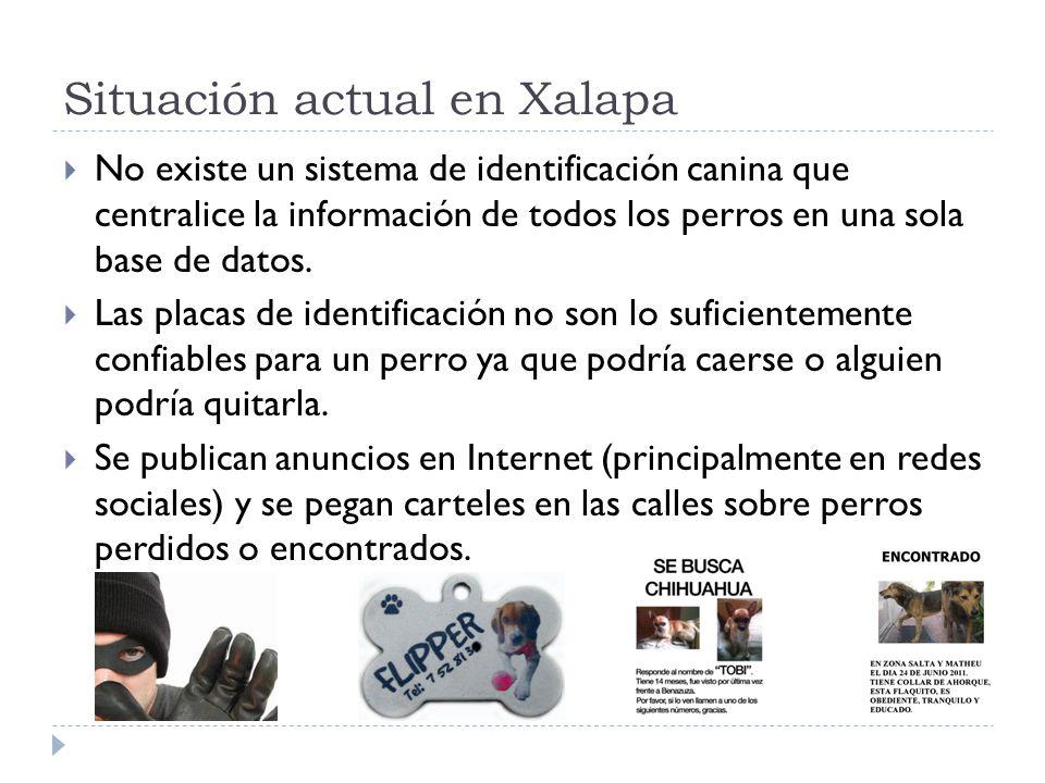 Situación actual en Xalapa No existe un sistema de identificación canina que centralice la información de todos los perros en una sola base de datos.